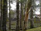 2 bed Detached house in Knocknagashel, Kerry