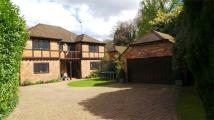 Detached property in Church Hill, CAMBERLEY...