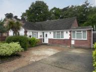 3 bed Detached Bungalow in Ridgeway Close...