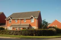 CLYST semi detached house to rent