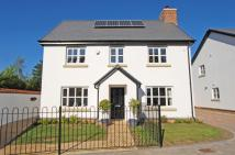 4 bed Detached property to rent in EXETER