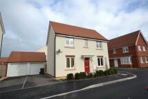 Detached house to rent in Cranbrook, Exeter, Devon