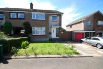 3 bed semi detached house for sale in Galabraes Crescent...