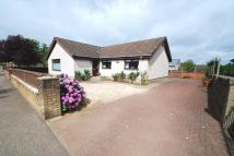 3 bed Detached Bungalow for sale in East Main Street...