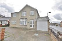 House Share in Lady Lane, Chelmsford