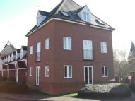 1 bed Apartment to rent in Melba Court, Writtle...