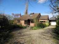 2 bed Detached Bungalow in Old Mill Loke, Loddon