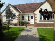 Daleswood Avenue Detached Bungalow for sale