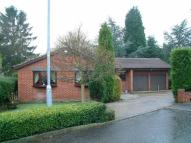 Detached Bungalow in Willow Beck, Notton...