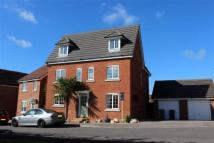 property to rent in Thyme Avenue, Fareham, Hampshire
