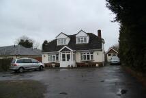Hunts Pond Road House Share
