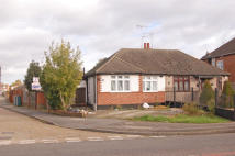 Bungalow for sale in Willow Tree Lane, Hayes...