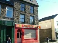 Ferndale Shop for sale