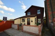 semi detached home to rent in Bryn Terrace, Brynsadler...