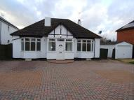 House Share in Billington Road...