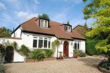 Detached Bungalow to rent in Oaklands Road...