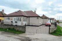 2 bedroom Detached Bungalow in Rhys Avenue, Kinmel Bay,