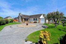Detached Bungalow for sale in Trevor Avenue, Rhuddlan