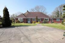 5 bed Detached Bungalow in Red Hill, Mount Road...