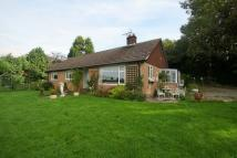 Detached Bungalow to rent in Barrow...