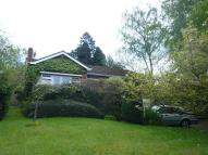 Detached Bungalow for sale in THE MOORLANDS...