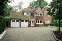 4 bedroom Detached home in WALSALL ROAD...