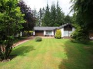 3 bedroom Detached Bungalow for sale in Lady Jane Gate, Bothwell...