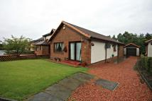 Detached Bungalow for sale in Muirhead Gate...