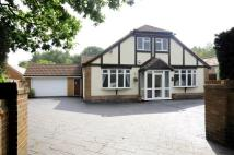 Detached Bungalow for sale in PENNS LANE, WALMLEY...