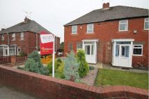 3 bed semi detached property to rent in Birch Avenue, Chapeltown...
