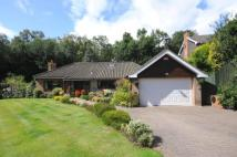 Detached Bungalow for sale in Tudor Hill...