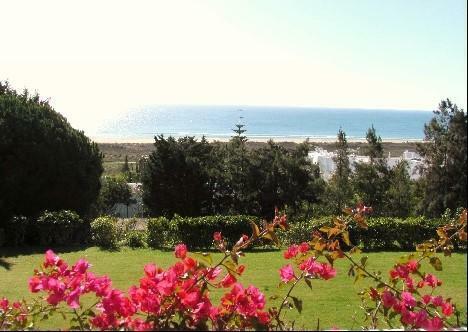 Ocean and beach views from garden