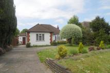 Bungalow for sale in Burdon Lane, Cheam...