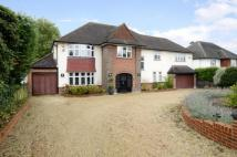 6 bedroom Detached house for sale in Shirley Avenue...