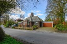 Detached Bungalow for sale in Copperas Lane, Haigh