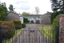 Detached Bungalow in West Lennox Drive...