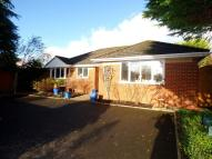 4 bed Detached Bungalow in Charlton Road, Andover...