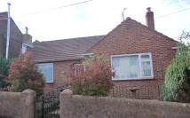 2 bedroom Detached Bungalow for sale in Flaxley Street...