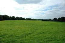 Land for sale in Asfordby Hill...
