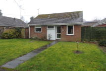 Detached Bungalow in Church Road, Thurston...