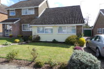 Semi-Detached Bungalow to rent in Lockington Crescent...