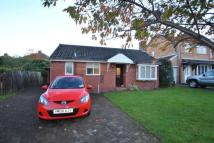 Bungalow in Middleton Close, Seaton...