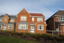 Detached property for sale in Ramsey Grove, Murton...