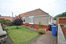 Bungalow for sale in Robert Square, Seaham...