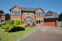Countess Close Detached house for sale