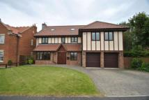 Detached home for sale in The Meadows, Seaton...