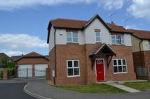 3 bed Detached property for sale in Staypleton Drive, Horden...