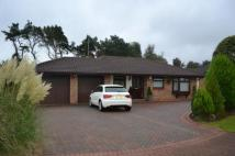 3 bed Bungalow for sale in Carrock Close, Peterlee...