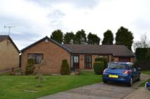 3 bed Bungalow for sale in Lumley Drive...
