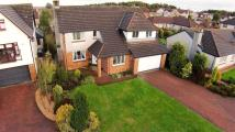 Detached home for sale in Kings View, Westerwood...